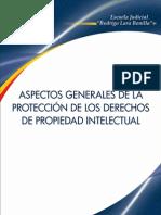 Aspectos Generales de La Protección de Los Derechos de Propiedad Intelectual - Colombia