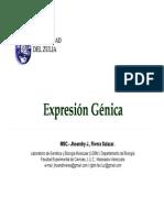 Regulación de La Expresión Genica