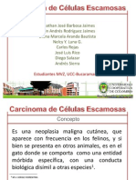 carcinomadeclulasescamosas-100421023821-phpapp01