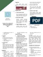 Leaflet Ispa Promkess