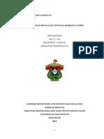 Laporan Perjalanan Biola NUR SAKINAH.docx