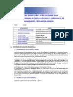 Informe Diario Onemi Magallanes 01.12.2014