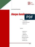 Rapport du projet ISEN.docx