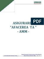 Manual Amm