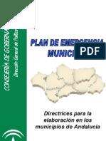 Directrices para la elaboracion del PEM