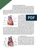 PBL skenario 1 kardiovaskular