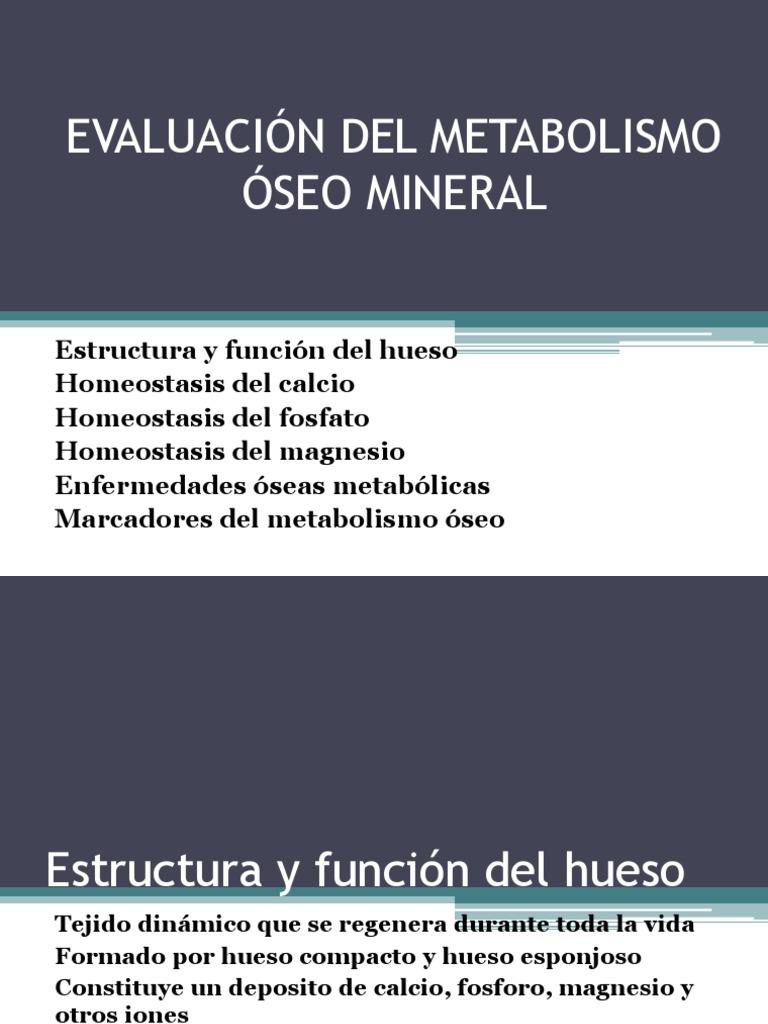 Metabolismo Oseo - Hueso - Calcio