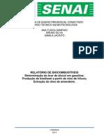 Relatório Biocombustível 2ª Prática!