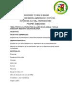 Protocolo Para La Disección (1)