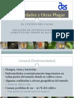 enfermedades-cacao.pdf