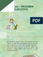 Resumen e Informacion General de Un Proyecto (1)