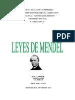IMPORTANCIA DE LAS LEYES DE MENDEL.docx