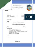 Informe #1 -ORGANICA 2.docx