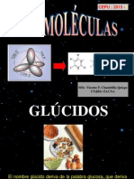 Gl_cidos - Lipidos -