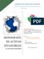 Activos Intangibles proyecto de Inversion