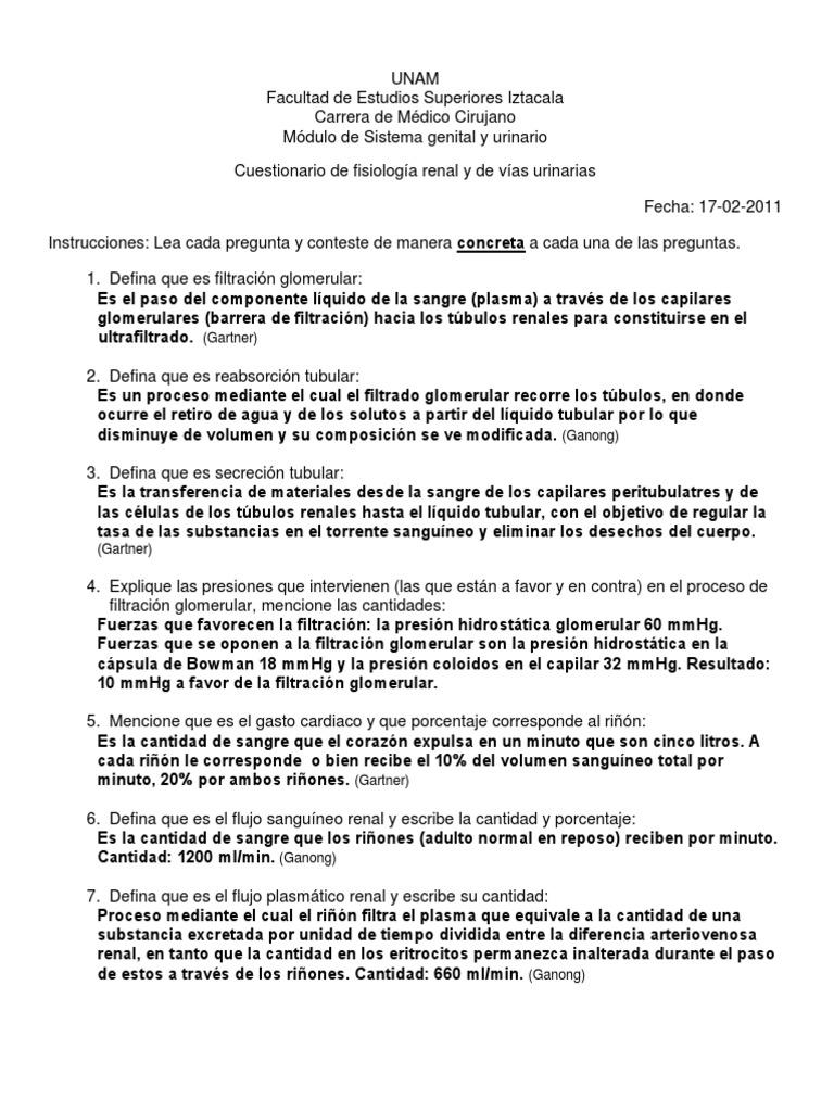 Fantástico Sistema Urinario Anatomía Y Fisiología Cuestionario ...