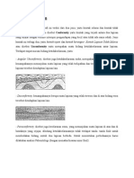 Kontak Stratigrafi