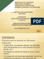 proyectos informatica
