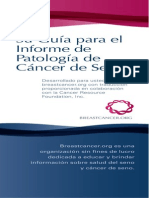 Guia para el informe de Cancer de Mama
