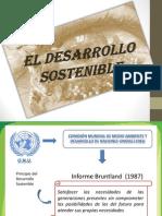 Desarrollo Sostenible 2013-I