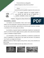 Guía Pueblos Originarios Zona Norte