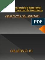Objetivos Del Milenio