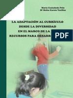 Adaptacion Al Curriculo Libro