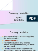 03-07 Lecture Coronary circulation.ppt