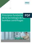 Principios de Bombas Centrifugas