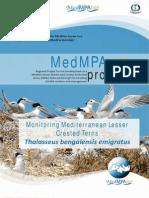 Monitoring Mediterranean Lesser Crester Tern