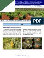 Boletin Fitosanitario 2-12. 4