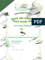 sistema de cultivo de hortalizas.docx