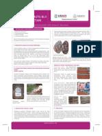 Pengaturan Mutu Biji Kakao Oleh Petani - AMARTA
