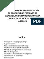 presentacion Geomatica