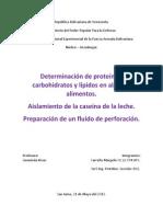 Determinación de proteínas, carbohidratos y lípidos en algunos alimentos. asilamiento de la cacina