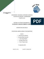 Informe Actividad Experimental 2
