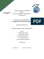 Informe Actividad Experimental 5