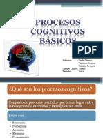 Procesos cognitivos basicos.