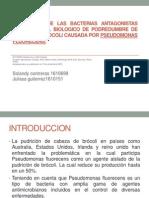 evaluacion de bacterias antagonistas para control biologico