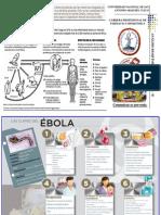 triptico ebola 2