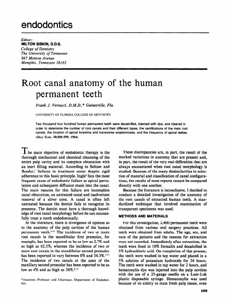 root Canal Anatomy of Human Teeth   Dental Anatomy   Tooth