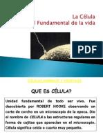 clase2-ciencias_1_.ppt