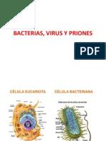Bacterias, Virus y Priones