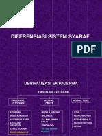 8. Diferensiasi Sistem Syaraf
