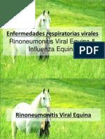 Rinoneumonitis Viral Equina
