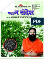 Yog Sandesh August-09 (Hindi)