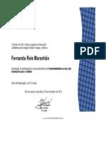 321178_certificado_Fgv