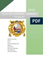 Ciclos de Tesoreria Normas Tecnicas