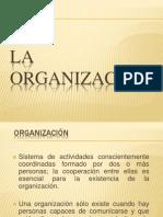 Etapas de Organizacion