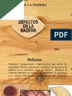 DEFECTOS_(Arbol_en_pie).ppt